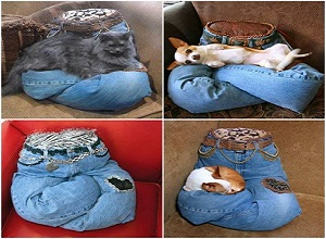 آموزش ساخت چند نوع استراحتگاه برای حیوانات خانگی با دور ریختنی ها