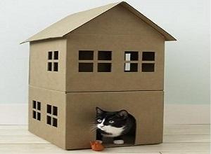 آموزش تصویری ساخت خانه برای حیوانات خانگی